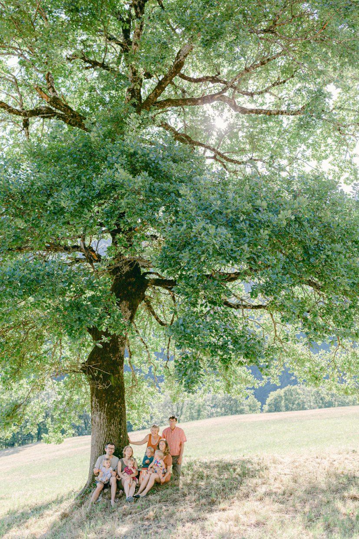 photo de famille au coucher du soleil sous un arbre près d'Annecy - Quentin Weber photographe de mariage annecy Haute-Savoie